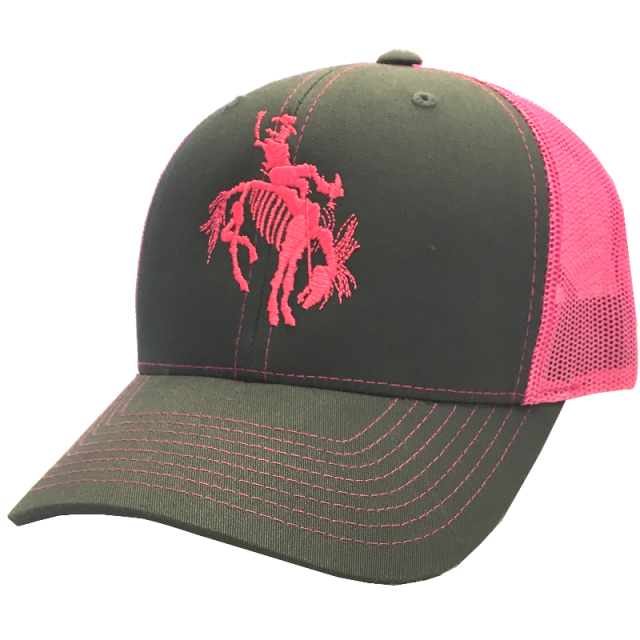Gary Allan Grey and Hot Pink Ballcap